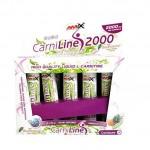 carniline-pro-fitness-2000-amix
